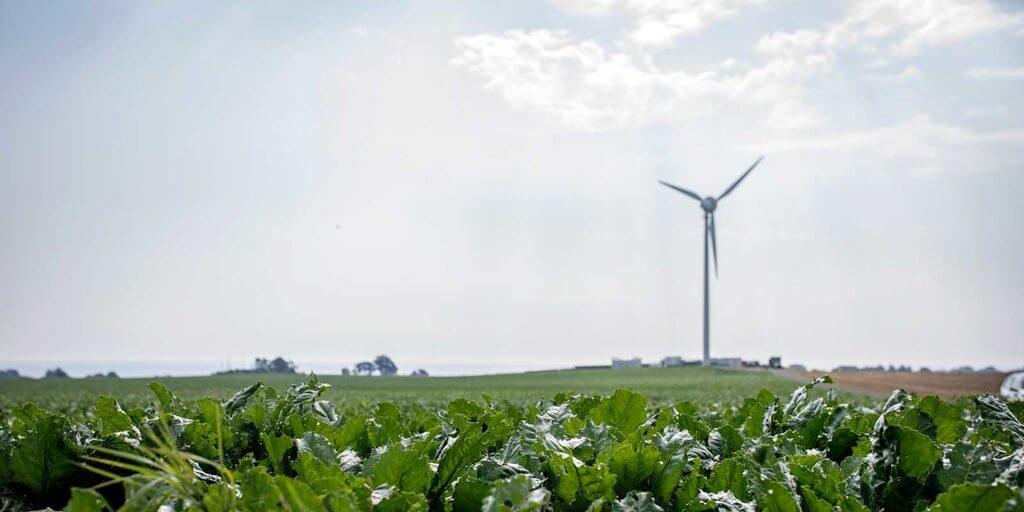 E.ON und RWE planen Mega-Deal   windmesse.de